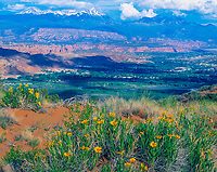 Moab Valley, Utah   La Sal Mountains and Colorado River View through Spanish Valley