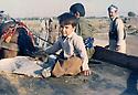 Iraq 1982 .In Tabakan, near Said Saddik, little boy on a cart and peshmergas  .Irak 1982 .A Tabakan, pres de Said Saddik, petit garcon sur une charette avec des peshmergas autour