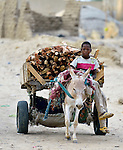A boy drives a donkey cart filled with firewood in Timbuktu, a city in northern Mali which was seized by Islamist fighters in 2012 and then liberated by French and Malian soldiers in early 2013.