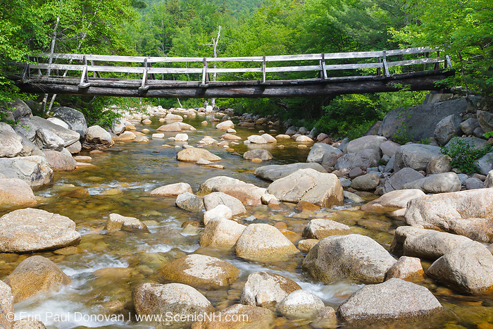 Side view of footbridge along the Thoreau Falls Trail, at North Fork Junction, in the Pemigewasset Wilderness of Lincoln, New Hampshire. This bridge crosses the East Branch of the Pemigewasset River. Just beyond the bridge is the location of where a timber trestle of the East Branch & Lincoln Railroad (1893-1948) once crossed the river.