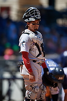 Jacksonville Jumbo Shrimp catcher Rodrigo Vigil (1) during a Southern League game against the Mississippi Braves on May 5, 2019 at Trustmark Park in Pearl, Mississippi.  Mississippi defeated Jacksonville 1-0 in ten innings.  (Mike Janes/Four Seam Images)