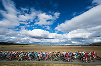 Picture by Alex Broadway/SWpix.com - 06/03/2018 - Cycling - 2018 Paris Nice - Stage Three - Bourges to Ch&acirc;tel-Guyon  - The peloton rides through the French countryside.<br /> <br /> NOTE : FOR EDITORIAL USE ONLY. THIS IS A COPYRIGHT PICTURE OF ASO. A MANDATORY CREDIT IS REQUIRED WHEN USED WITH NO EXCEPTIONS to ASO/Alex Broadway MANDATORY CREDIT/BYLINE : ALEX BROADWAY/ASO