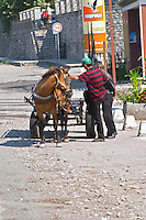 Street scene with a horse drawn cart and two men Shkodra. Albania, Balkan, Europe.
