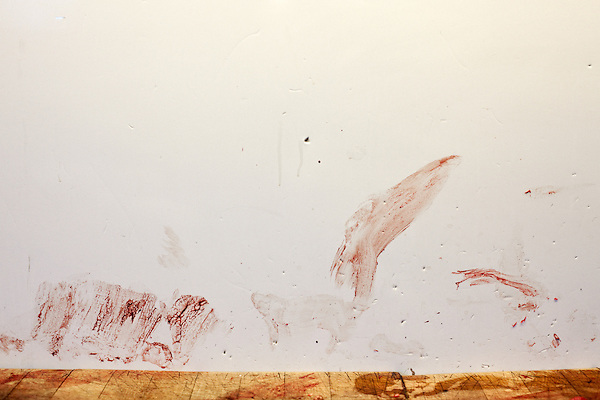 January 2, 2012. Chapel Hill, NC.. Blood on the wall in the processing room..Norman's Deer Processing & Sausage Making has been serving private customer's for over 20 years. Hunters bring their deer in to be processed into all cuts of venison and several types of sausage.