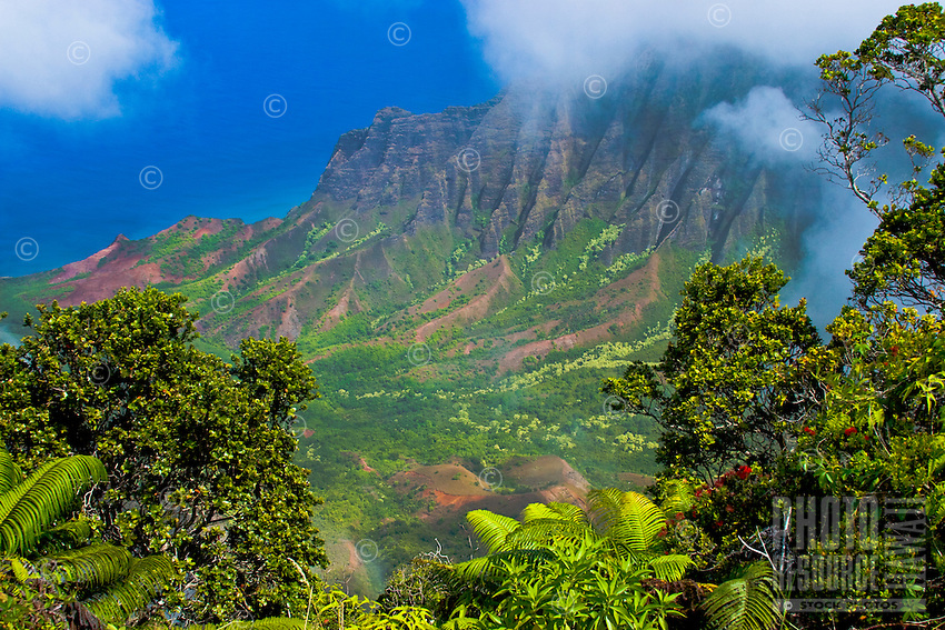 The clouds of the Kalalau Valley allow the lucky and patient a spectacular view down to the Na Pali Coast of Kauai.