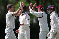 Nick Winter of Brentwood celebrates with his team mates after taking the wicket of Harsh Kumar during Brentwood CC vs Ilford CC, Shepherd Neame Essex League Cricket at The Old County Ground on 8th June 2019
