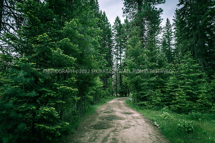 5/31/2015&mdash;Cle Elum, Washington, USA<br /> <br /> <br /> the main road running through the Twentynine Pines Campground, on Teanaway Road North Fork in Cle Elum, Washington. <br /> <br /> A Kittitas County sheriff&rsquo;s deputy, called to the camp following reports of unattended children there, described a feeling that there was &ldquo;some kind of cult activity&rdquo; going on at Melford Warren Jr.&rsquo;s&nbsp;campsite, which was near the North Fork Teanaway River which runs next to the camp. Now, investigators claim Warren, 43, was nearby when deputies arrived on Sept. 15, raping one of his 12&nbsp;children.<br /> <br /> Melford Warren Jr., 43, lived with his two lovers, Shannon Felicia Ann Smith, 41, and Amanjot Kaur Jaswal, 28 in Port Orchard, Washington. Warren has been charged with child rape and related crimes on allegations stemming from his family&rsquo;s stay at this Port Orchard home.<br /> <br /> Photograph by Stuart Isett<br /> &copy;2015 Stuart Isett. All rights reserved.