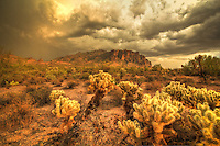 Lost Dutchman's Gold - Arizona<br /> Lost Dutchman State Park<br /> Summer Monsoon storm clouds