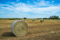 This is another close up of a hale bale on this  farm in this rural setting in the Texas Hill Country.