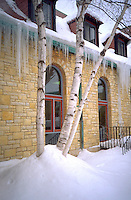 Icicles and birch tree in Unity Unitarian Church court yard. St Paul Minnesota USA