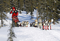 Saturday March 10, 2012 Aliy Zirkle on the trail not far from Kaltag enroute to Unalakleet. Iditarod 2012.