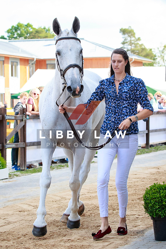 GBR-Kirsty Short with Cossan Lad during the 1st Horse Inspection, CCI4* presented by DHL , at the 2017 Luhmühlen International Horse Trial. Wednesday 14 June. Copyright Photo: Libby Law Photography