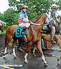 Etar with Brittany Trimble aboard before The International Ladies Fegentri Race at Delaware Park on 6/10/13