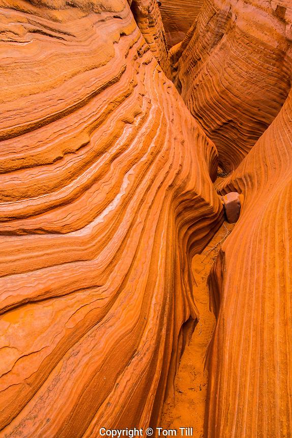 Homologous slot canyon near Lake Powell, Glen Canyon National Receation Area, Utah