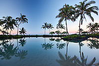 Pond reflecting palm trees. Grand Hyatt, Kauai, Hawaii