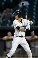 Left fielder Matt Winaker (5) of the Columbia Fireflies bats during a game against the Charleston RiverDogs on Wednesday, August 29, 2018, at Spirit Communications Park in Columbia, South Carolina. Charleston won, 6-1. (Tom Priddy/Four Seam Images)