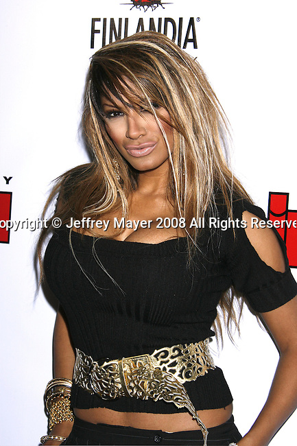 Actress Traci Bingham arrives at the In Touch Weekly and Ish Entertainment To Host Summer Stars Party 2008 on May 22, 2008 at Social Hollywood in Hollywood, California.