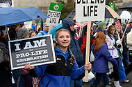 January 23, 2012  (Washington, DC)  Thousands of people descended on Washington for the annual March For Life and rally held on the National Mall.   (Photo by Don Baxter/Media Images International)