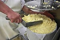 Europe/France/Midi-Pyrénées/12/Aveyron/Aubrac/Laguiole: Fabrication du Fromage de Laguiole AOP à la Coopérative Jeune Montagne - Moulage des fourmes - le fromage frais est placé dans les moules