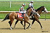 Keep Crossing before The Beautiful Day Stakes at Delaware Park on 7/3/14