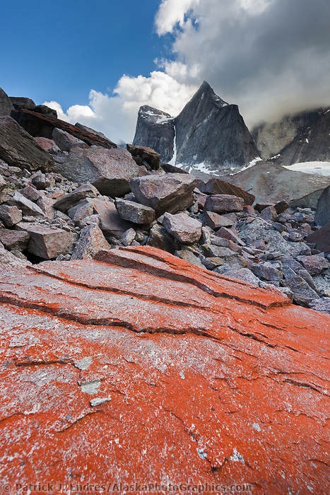 Red lichen on slabs of rocks in the Arrigetch PeaksGates of the Arctic National Park, Alaska