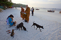 Ko Lipe. Monks and beach dogs during morning alms collection at Pattaya beach.