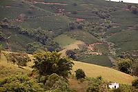 Areado_MG, Brasil...Plantacao de cafe em Areado...The coffee plantation in Areado...Foto: LEO DRUMOND / NITRO