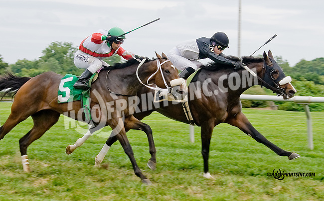Troubled Waters winning before being Disqualified at Delaware Park on 8/30/14