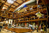The Great Hall at the Bishop Museum in Honolulu, O'ahu.