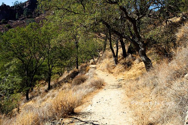 Pinnacles National Park in central California