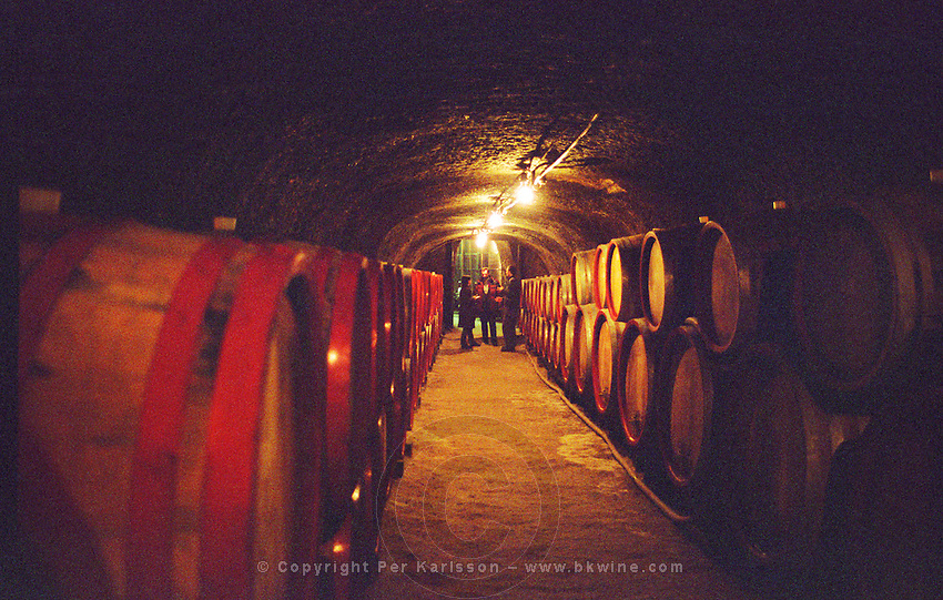 The Tibor Gal (GIA) winery in Eger (famous for Egri Bikaver): underground tunnels with rows of barrels filled with wine and some people under a light. Tibor Gal is one of the leading growers and wine makers in Eger. The company was founded in 1993 in collaboration with Nicolo Incisa della Rochetta (Sassicaia, Italy) and Alpine from Germany