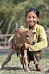 Thirteen-year old Son Neth and her calf in the Cambodian village of Char. The animal was provided as part of an income generating project sponsored by the Community Health and Agricultural Development program of the Methodist Mission in Cambodia.