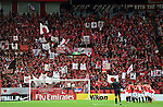 Urawa Reds fans,.APRIL 3, 2013 - Football /Soccer : AFC Champions League 2013 Group F during Matchday-3,between Urawa Reds (JPN) 1-3 Jeonbuk Hyundai Motors FC (KOR) at Saitama Stadium 2002, Saitama, Japan . (Photo by Jun Tsukida/AFLO SPORT).