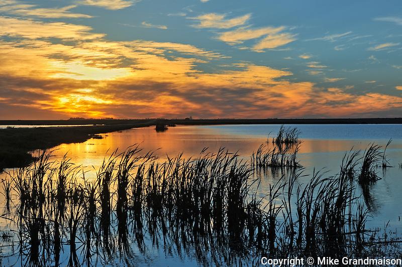 Wetland at sunset<br /> Tuxford<br /> Saskatchewan<br /> Canada