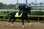 April 26, 2019 : Long Range Toddy works out  at Churchill Downs, Louisville, Kentucky, preparing for a start in the Kentucky Derby. Owner Willis Horton Racing LLC, trainer Steven M. Asmussen. By Take Charge Indy x Pleasant Song (Unbridled's Song) Mary M. Meek/ESW/CSM
