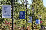NV150 downtown banners