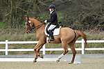 11/03/2017 - Class 5 - Elementary 45 - British Dressage - Brook Farm training centre