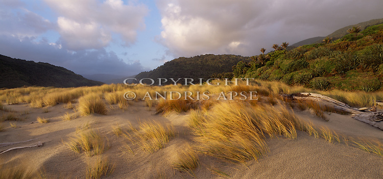 Sand dunes  on the Heaphy Track. Buller Region. New Zealand.