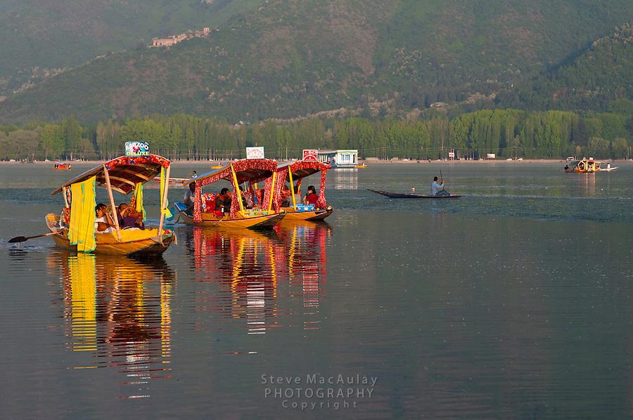 Brilliantly colored shikara gondolas and reflections in Dal Lake, Srinagar, Kashmir, India.