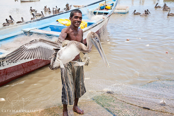Fisherman Nyron Dindial Sankar holding a pelican,.Orangefield