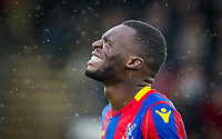 Christian Benteke of Crystal Palace looks in pain during the Premier League match between Crystal Palace and Manchester City at Selhurst Park, London, England on 31 December 2017. Photo by Andy Rowland.