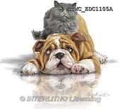 Marcello, REALISTIC ANIMALS, REALISTISCHE TIERE, ANIMALES REALISTICOS, paintings+++++,ITMCEDC1105A,#A# ,dogs,puppies