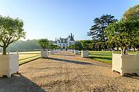 France, Indre-et-Loire (37), Chenonceaux, château et jardins de Chenonceau, avant-cour  et caisses d'agrumes
