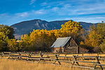 Gallatin County, MT: Fence line borders wood barn in early fall