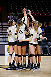 The Wake Forest Demon Deacons huddle up prior to the start of their match against the Loyola Ramblers in the LJVM Coliseum on September 3, 2016 in Winston-Salem, North Carolina.  The Ramblers defeated the Demon Deacons 3-2.   (Brian Westerholt/Sports On Film)