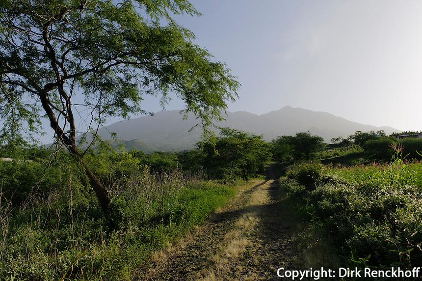 Landschaft bei Figueira, Fogo, Kapverden, Afrika