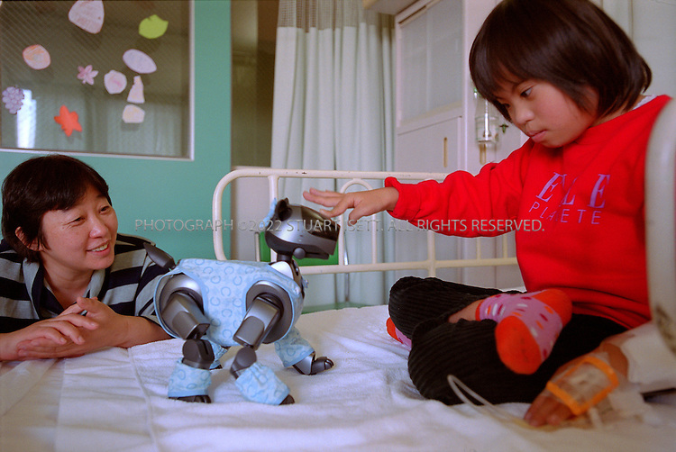 11/19/2001--Yamato City, Japan.A handicapped  patient (names cannot be used) looks at a Sony Aibo robot dog from Dr. Akimitsu Yokoyama's clinic at the Yamato Municipal Hospital. Dr. Yokoyama is a psychiatrist studying how the robots can help releave the stress of hospital stays for young children...All photographs ©2003 Stuart Isett.All rights reserved.This image may not be reproduced without expressed written permission from Stuart Isett.