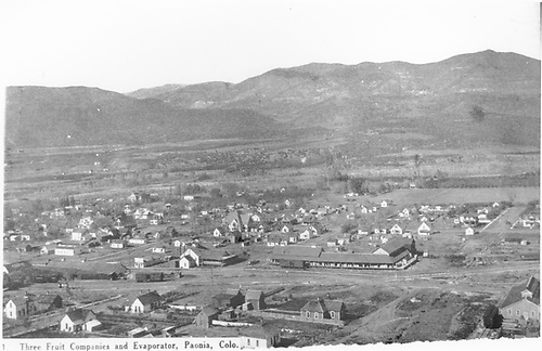 &quot;Three fruit companies and evaproator, Paonia, Colo.&quot;  Elevation view of Paonia, CO.<br /> D&amp;RG  Paonia, CO
