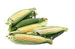 Corn still life.