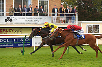Winner of The Irish Thoroughbred Marketing Novice Stakes  Kenzai Warrior ridden by Jason Watson and trained by Roger Teal during Racing at Salisbury Racecourse on 5th September 2019